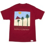 diamond-supply-co-2012-summer-tshirts-2-17