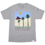 diamond-supply-co-2012-summer-tshirts-2-18