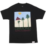 diamond-supply-co-2012-summer-tshirts-2-20