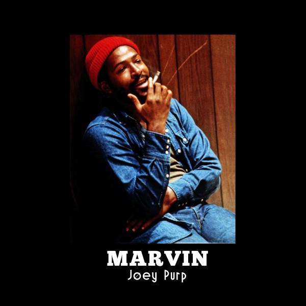 Marvin4-e1362581689285