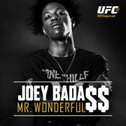 joey-badass-mr-wonderful